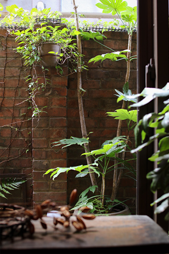 レンガの庭 アンティーク京都