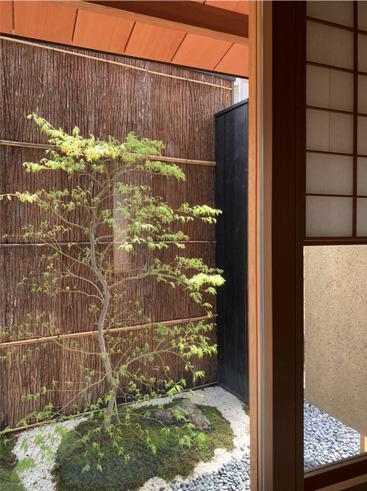 和室 グリーン 植栽 箱庭
